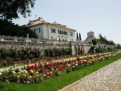 Краљевски двор